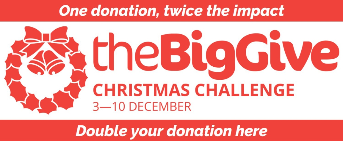 Christmas Challenge donate button for website